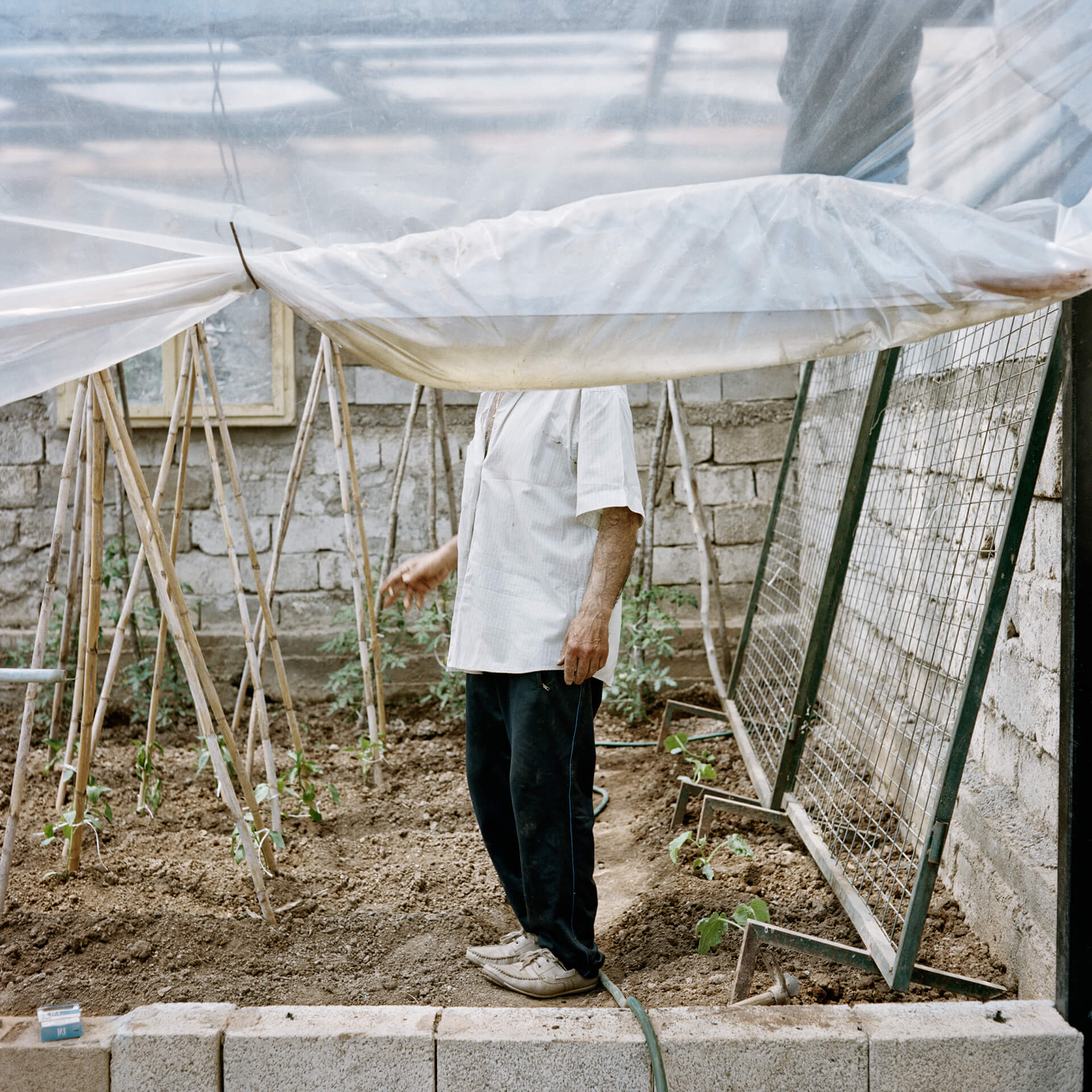 Photo d'un homme dont le visage est caché par la bâche de sa serre, Grèce.